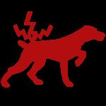 Tierarztpraxis am Gotenring, Köln - Rosin, Wilms
